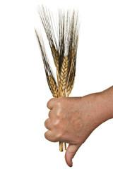 Thumbs-down-on-wheat